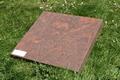Zerkje multi color red graniet 50x50x5 cm